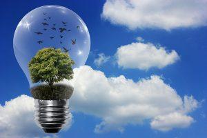 Kohlenstoff und Energie - Woher? Wohin?